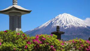 総本山の新緑 2020年5月|日蓮正宗布教部